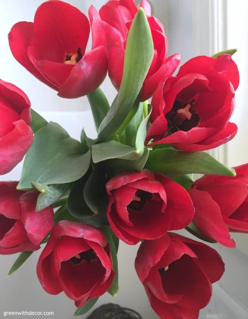 Green With Decor – red flowers