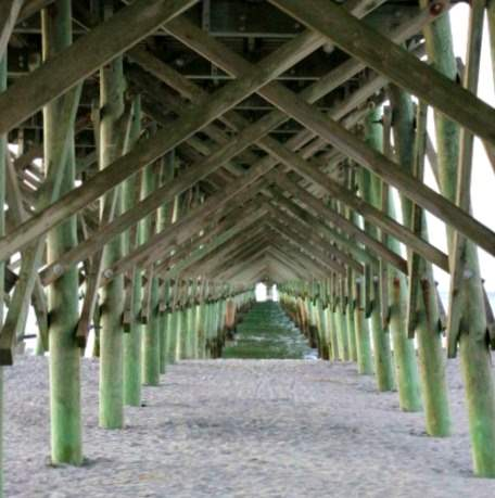 8 fun things to do in Folly Beach, South Carolina