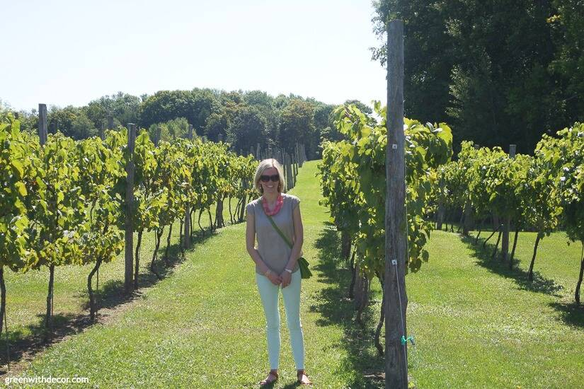 Wineries in Door County – a girl in the vineyard at Simon Creek Vineyard & Winery