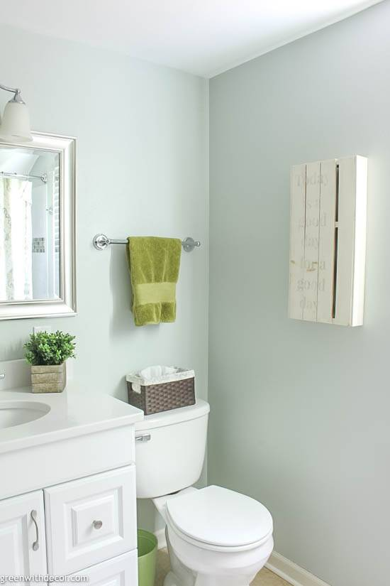 Sea Salt by Sherwin Williams in a bathroom with white vanity